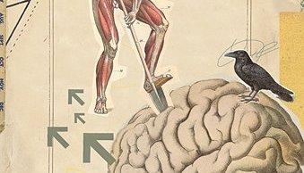 brain picker